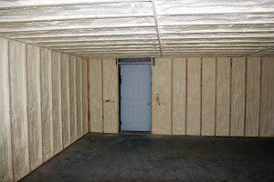 Insulation spray foam door