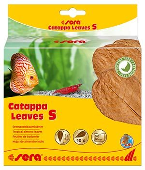 sera-catappa-leaves-s-10-st
